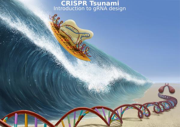 crispr tsunami flyer